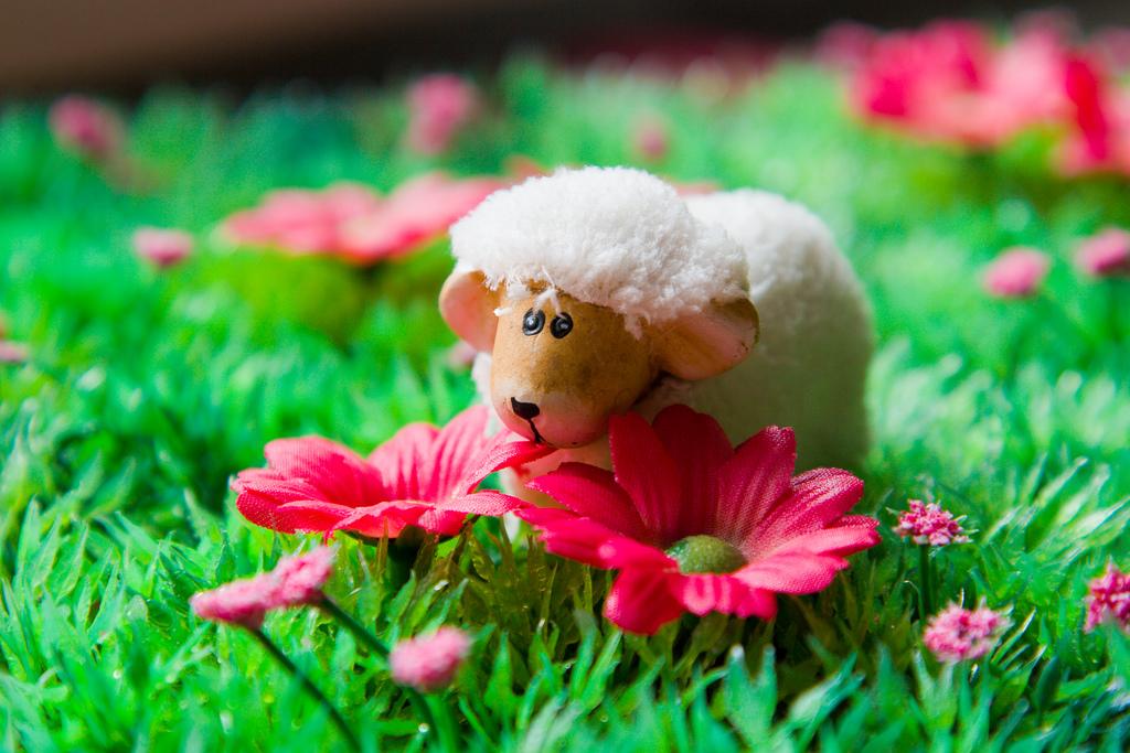 Frühlingsfest im Chinabrenner